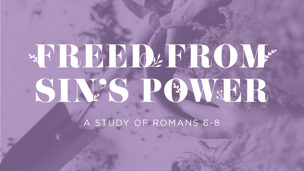 Freed From Sin's Power